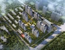 新苏龙城天下
