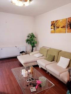 (老城区)凯旋花园3室2厅1卫96m²精装修